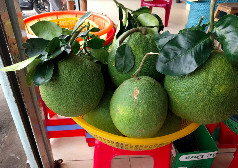 Fruits at Tra Vinh Province